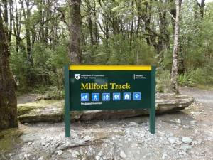 NZ Milford trck